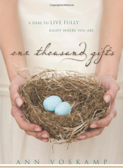 1000 Gifts by Ann Voskamp   Summer Beach Reads   Book Recommendations from Up North Parent