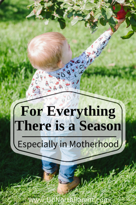 For Everything There is a Season, Especially in Motherhood | Season in Motherhood and Business as an Entrepreneur