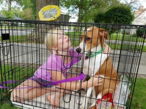 TWIN CARE: dog walking and pet sitting business in Brainerd, Minnesota