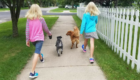 TWIN CARE_ Dog Walking and Pet Sitting in Brainerd, Minnesota