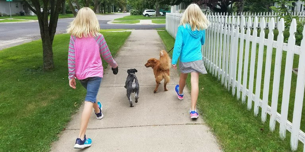 Got Pets? Twin Tweens Turn a Love of Pets into a Dog Walking and Pet-Sitting Business