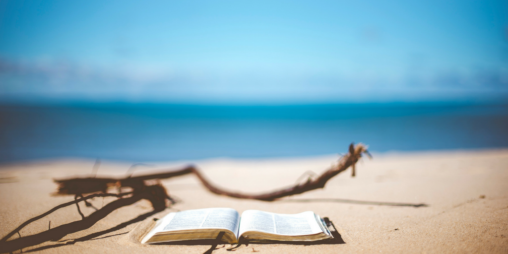 Beach Reads | Our Summer Book Recommendations for All Ages