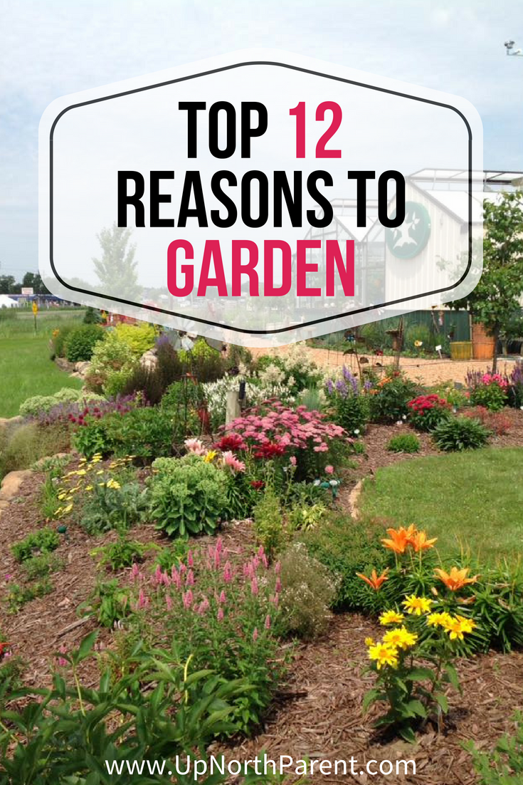Top 12 Reasons to Garden _ The Intrinsic Value of Gardening
