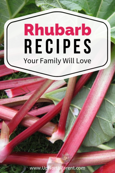 Tart and Terrific Rhubarb Recipes Your Family will Love