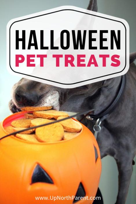 Pup-or-Treat! Easy Halloween Pet Treats
