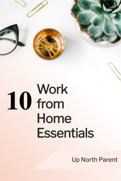 10-Work-From-Home-Essentials 2